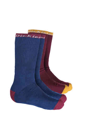 Dickies Roderfield Calcetines Azul Marrón 39 42